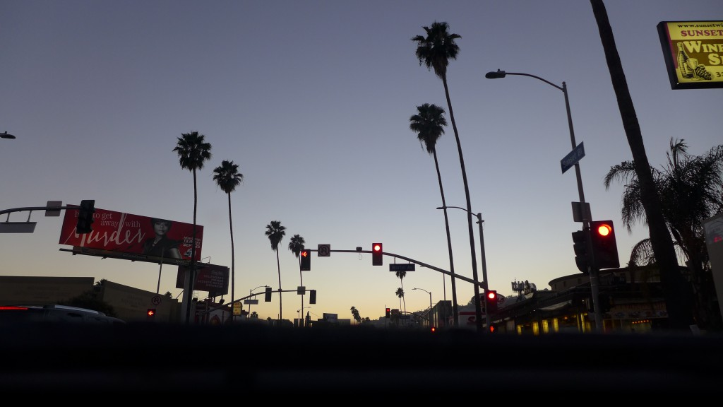 Sunset Bulevard by night